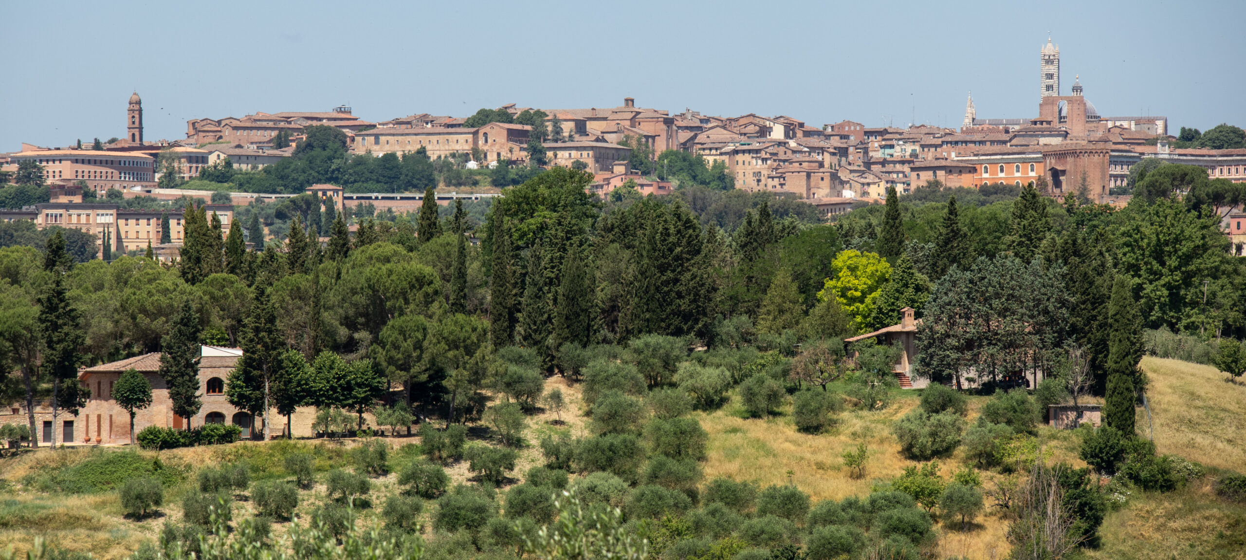Views of Siena
